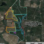Timber Map